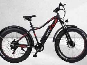 E-Bike Ege